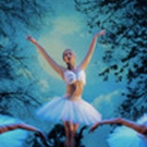 Melbourne Ballet Company Returns to The Concourse with ARCHE