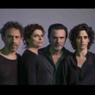 BWW Preview: THE REALISTIC JONESES (Os Realistas) Brings Debora Bloch to Sao Paulo at Teatro Porto Seguro