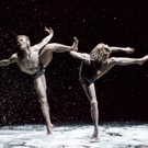 The Dance Gallery Festival Announces 10th Anniversary Lineup