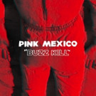 Pink Mexico Announces 'Fool' LP with 'Buzz Kill'