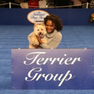 THE WIZ LIVE's Shanice Williams & Toto Present 'National Dog Show' Award