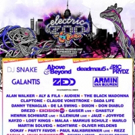 Zedd, Armin van Buuren & More Set for Electric Zoo 6th Boro Music Festival
