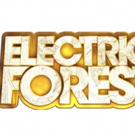 2016 Electric Forest Adds More Performers to Lineup; Curated Events Announced