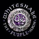 White Snake Storm Album Charts Around the Globe; Announce Tour Dates