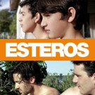 Engaging LGBT Drama ESTEROS on DVD/VOD from Breaking Glass Pictures