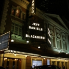 Up on the Marquee: BLACKBIRD