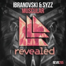 Ibranovski & Syzz Launch Revealed Recordings Debut 'Muscular'