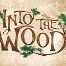 Heather Headley Leads Starry Cast of INTO THE WOODS, Beginning Tonight at The Muny