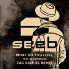 Seeb ft. Jacob Banks – What Do You Love (Zac Samuel Remix)