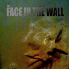 Science Fiction Action Movie THE FACE IN THE WALL DVD Releases This July