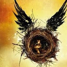 250,000 New Seats For HARRY POTTER AND THE CURSED CHILD To Go On Sale 4 August 2016
