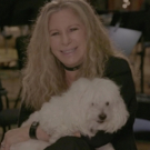 STAGE TUBE: Barbra Streisand Shares Her Favorite Things About Each City on Upcoming Tour; Tickets on Sale Tomorrow!