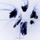 British DJ Tom Staar Releases New Single 'Drift' Today via Steve Angello's SIZE Records