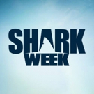 Discovery Announces 'Jawsome' Shark Programming for SHARK WEEK 2017