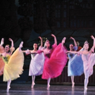 New Jersey Ballet's Holiday Classic NUTCRACKER to Dance Into MPAC