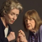 STAGE TUBE: David Hyde Pierce, David Lindsay-Abaire, Marylouise Burke and Holland Taylor Chat up RIPCORD