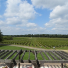 GARDEN STATE WINE GROWERS ASSOCIATION Launches Weekly Radio Show on NJ's WCTC-AM
