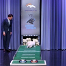 VIDEO: Watch Puppies Predict the Winner of SUPER BOWL 50 on 'Tonight'