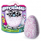 'Water for Elephants' Author Stuck With $23,000 Worth of Hatchimals