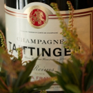 CHAMPAGNE TAITTINGER and Christmas in July Photos