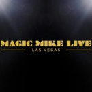 VIDEO: Official - Channing Tatum's MAGIC MIKE LIVE to Bare All on the Vegas Strip