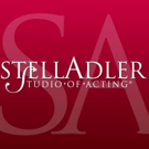 Stella Adler Studio to Host 'THE OTHER BOX' Panel About Mixed-Race America