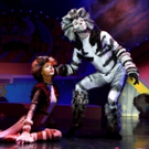 BWW Review: Columbus Children's Theatre Breathes a Fresh New Life Into CATS