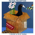 Peter Frampton Reveals New Song 'I Saved A Bird Today'