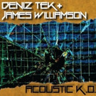 James Williamson Teams with Radio Birdman's Deniz Tek for 'Acoustic K.O.' EP