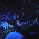 VIDEO: James Cameron Gives First Look at Disney World's New AVATAR Attraction