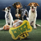PUPPY BOWL XII Retrieves Hit Ratings for Animal Planet