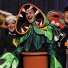 Segerstrom Center Opens 2015-16 Spotlight Series with FORBIDDEN BROADWAY This Weekend
