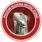 Passim Iguana Music Fund Grants Over $40K to Local Musicians