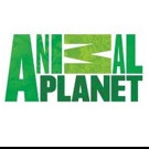 New Season of MONSTERS INSIDE ME Set for Animal Planet's Halloween Week