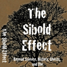 THE SIBOLD EFFECTl by John David Miller is Now Available