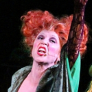 BWW Review: A Hysterical UMPO HOCUS POCUS Carries You to the Divine