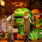 BWW Review: LITTLE SHOP OF HORRORS, New Wimbledon Theatre, 23 August 2016