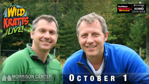 WILD KRATTS - LIVE! PBS KIDS Show Comes Alive on Stage