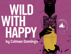 City Theatre to Continue 2016-17 Season with Colman Domingo's WILD WITH HAPPY
