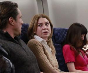 BWW Recap: A Romance Finally takes Flight on GREY'S ANATOMY