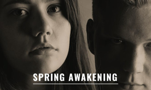 SPRING AWAKENING to Bring Sexuality, Friendship, Puberty and Rock & Roll to the Warehouse Theatre