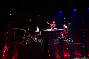 BWW Review: CIRCUS 1903 Has A Plethora of Family-Friendly Acts Up Its Sleeve