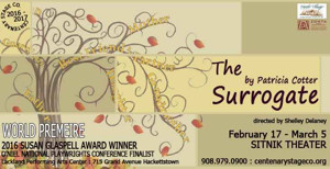 The Surrogate at Centenary Stage-A Hilarious New Play and a Must-See