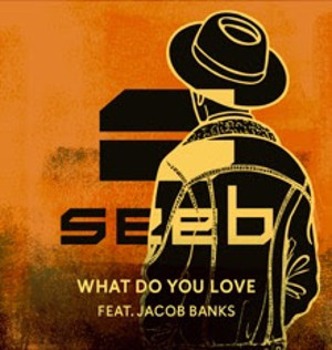 Seeb Unveils New Single 'What Do You Love' feat. Jacob Banks