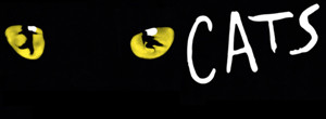 Breaking News: CATS to Return to Broadway This Summer; Andy Blankenbuehler Joins Team