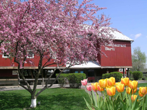 Celebrate Mother's Day with Food, Theatre and More at Amish Acres