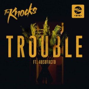 Image result for trouble the knocks