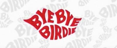 Harvey Fierstein Details Changes Made to NBC's BYE BYE BIRDIE LIVE