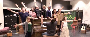 BWW TV: Go Down the Dell with the National Tour of Fiasco Theater's INTO THE WOODS!