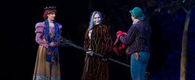 Photos: Emily Skinner, Nick Bailey, Jeremy Hays & More in INTO THE WOODS